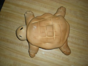 aerial view of turtle bread